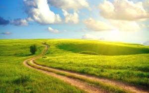 beautiful-walking-path_277325988
